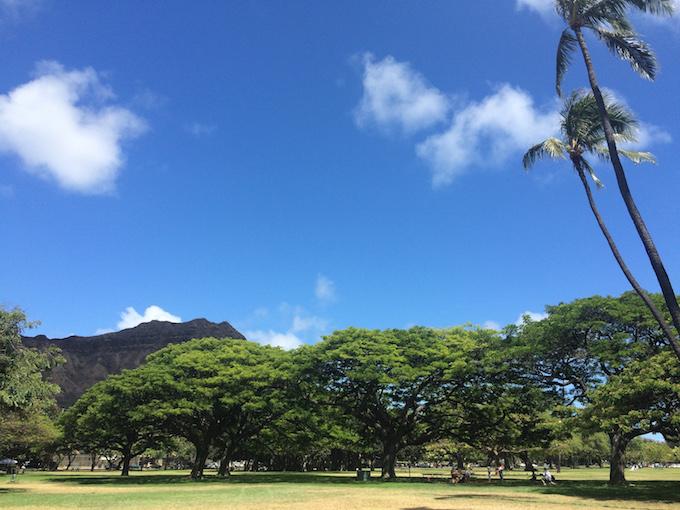 ハワイの自然広場