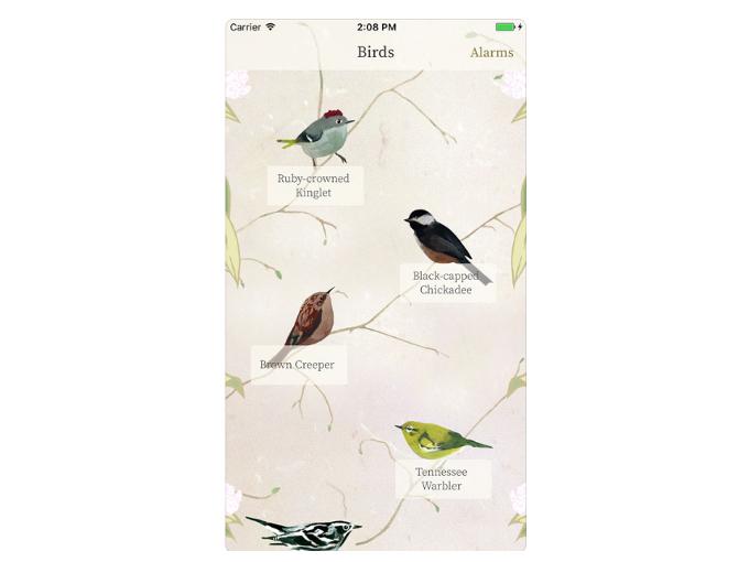 鳥一覧を表示した画像