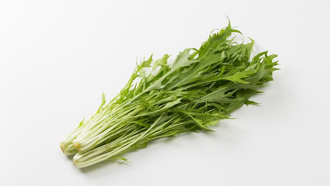 水菜のレシピ