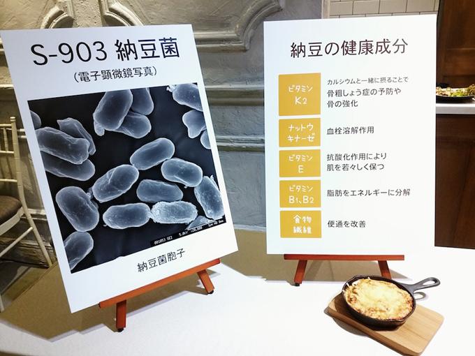 納豆菌の図と健康成分パネル