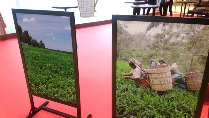 日東紅茶Tea Standカフェスペースにあるお茶づみの絵の画像
