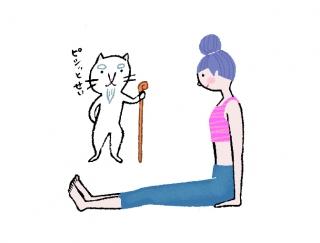 骨盤をピシッと立てて~!お腹やせに効く「杖のポーズ」 #今日のねこヨガ