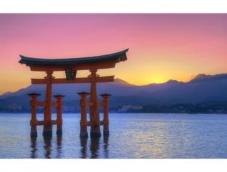5〜9月生まれの1月の運勢。ていねいな仕事ぶりで好感度UP!東の神社がパワースポット(5月5日〜7月19日生まれ)向日葵・漢方女神占い