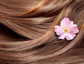 冬になると乾燥ダメージが気になる!ツヤ髪をつくるヘアケア習慣
