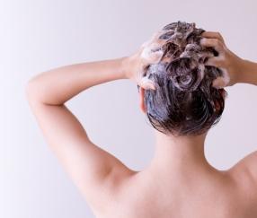 シャンプーしている女性の後ろ姿画像