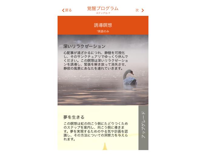 「覚醒プログラム」のステップ5を表示した画像