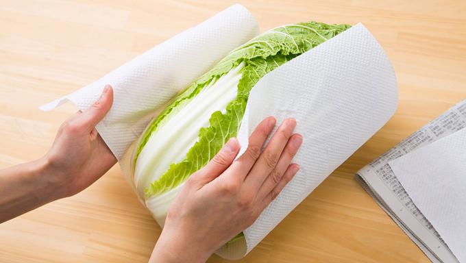 白菜をキッチンペーパーで包んでいる写真