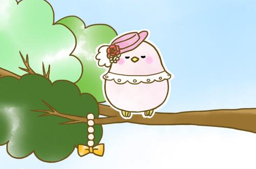 真ん中の帽子をかぶった小鳥