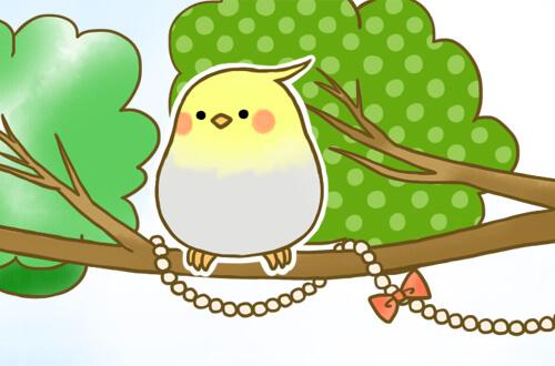 真ん中の灰色と黄色の小鳥