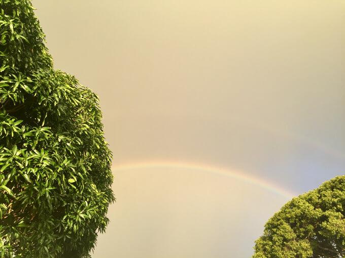 ハワイ空に虹がかかっている画像
