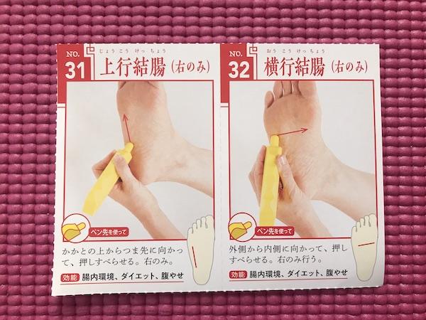 横行結腸と上行結腸の部位を示すページ(右足)