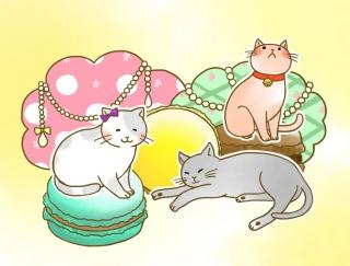 [2月13日]明日のバレンタイン、うまくいく? #今日のいきものみくじ