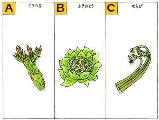 【心理テスト】山菜ときいて、パッと思いつくのは次のうちどれ?