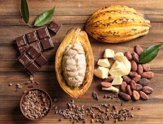 カカオ70%以上がおすすめ☆ 腸内環境を整えてくれるチョコレートの健康パワー