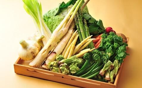 春野菜の集合