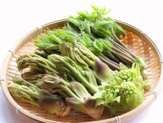 春はデトックスのチャンス! 冬にたまりがちな老廃物の排出を助ける春野菜を食べよう