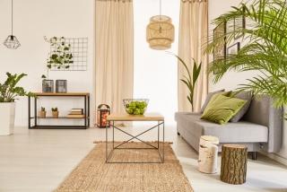 観葉植物のあるお部屋の画像