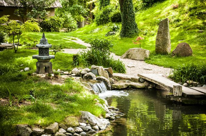 素敵な庭園の画像