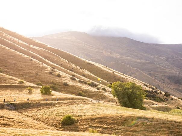 モタタプ草原