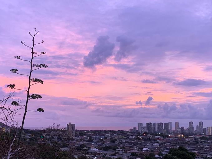 ピンク夜景の綺麗な街並み