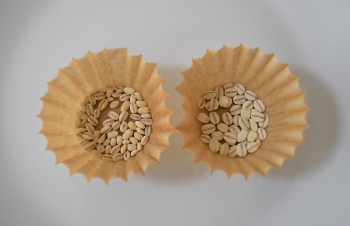 もち麦と押し麦の画像