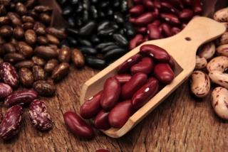 小豆や黒豆などの豆類の集合