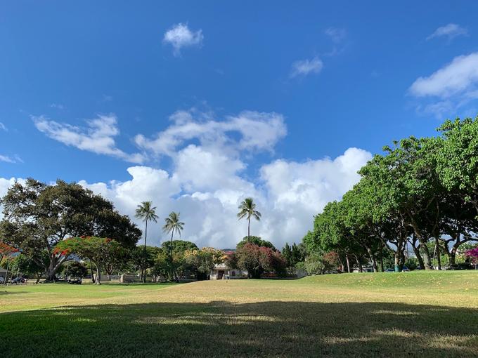 ハワイのきれいな広場、景色