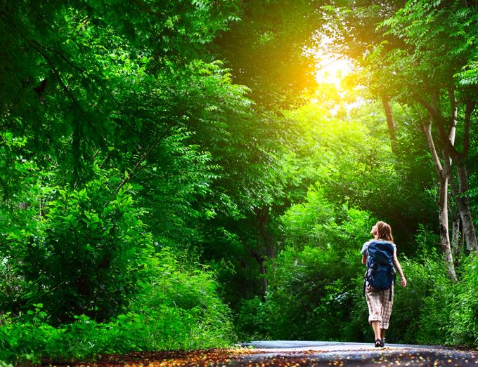森を散歩している女性