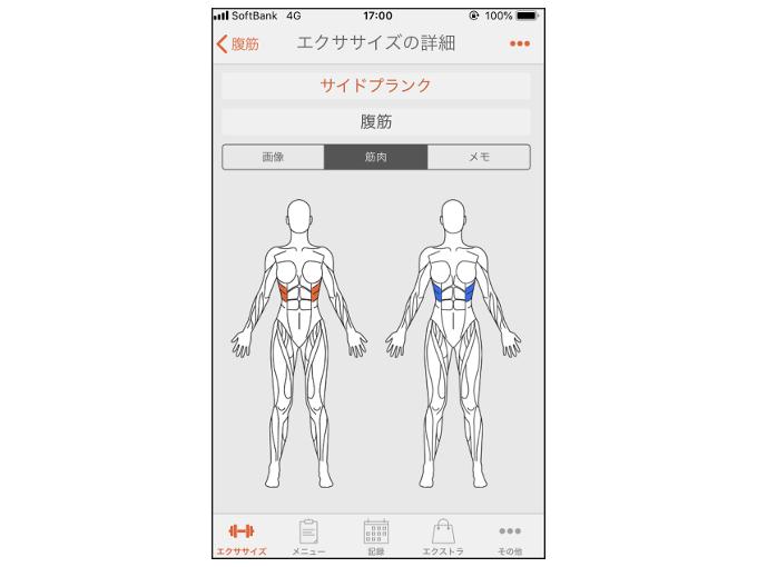 「筋肉」を表示した画像