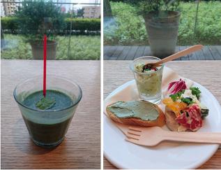 35億年前に地球に誕生した〝藻″の驚きのパワーとは⁉ スーパーフード「スピルリナ」を実食! #Omezaトーク