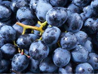 果物と野菜には、病気をはねのけるパワーあり