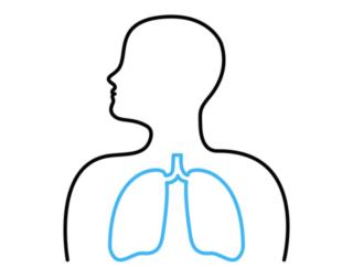 運動は長い目で見ても効果あり! 激しい運動ほど肺の病気が減少