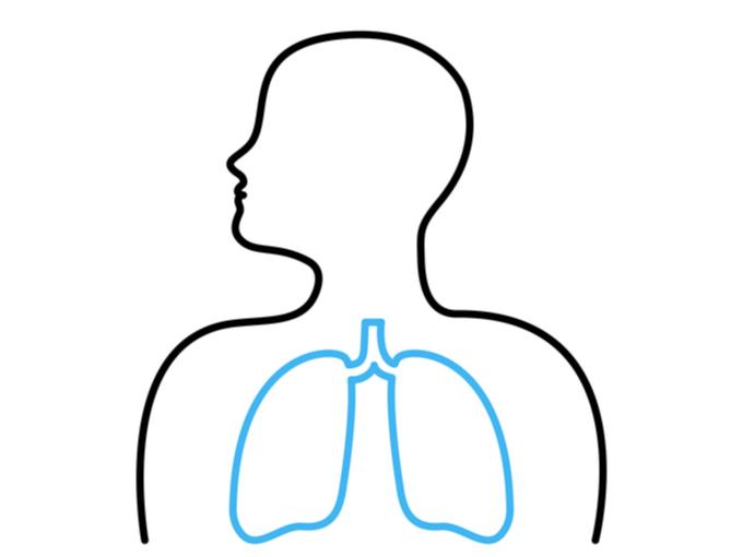 激しい運動をしている人ほど肺が健康