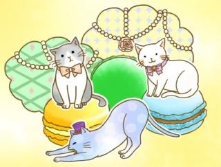 [7月27日] 今日が運勢の梅雨明け! #今日のいきものみくじ