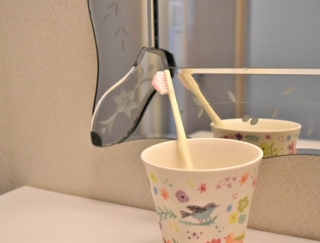 「日本一売れてる」という言葉につられて買った奇跡の歯ブラシ #Omezaトーク