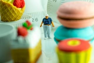 お菓子に埋もれた肥満の人形