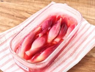 キレイなピンク色にテンションUP「みょうがの甘酢漬け」#今日の作り置き