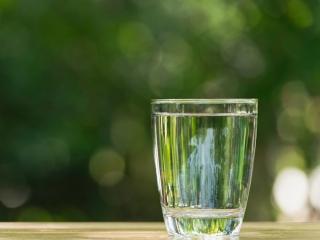 新緑を背景にしたグラスの水画像