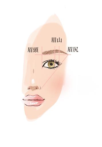 女性の顔の左上側イラスト