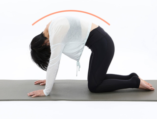 背中のこりをオフ!自律神経を整える「リセットストレッチ」