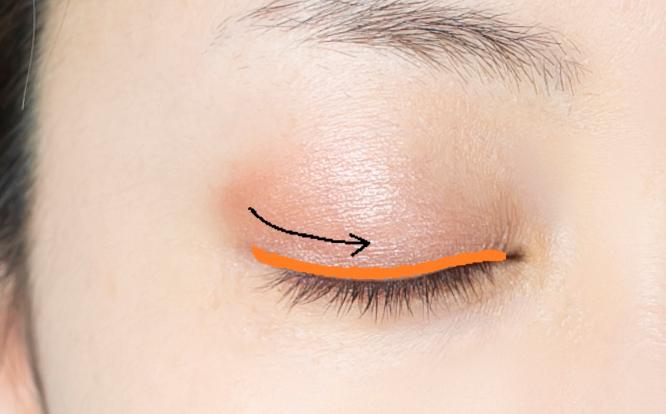 女性目元(上まぶたにオレンジの囲みと黒矢印あり)画像