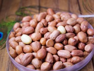 医学博士がレクチャー! ピーナッツの栄養を吸収する医学的な食べ方
