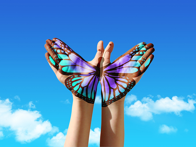 青空と蝶の写真