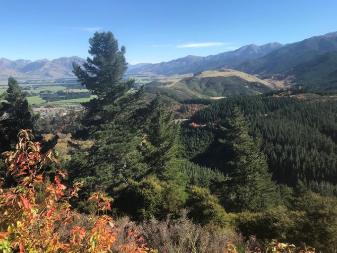ニュージーランドの山頂からの景色