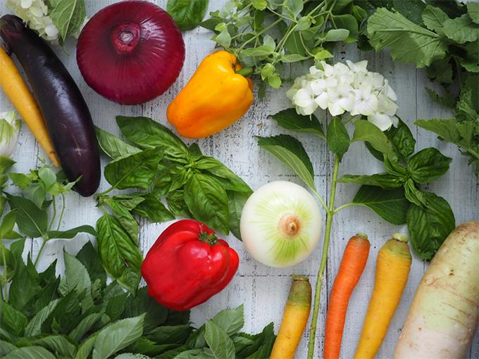 腸を整え、セロトニンの合成をサポートするさまざまな食材