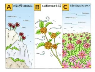 【心理テスト】夢の中で、花が咲いています。それは何の花?