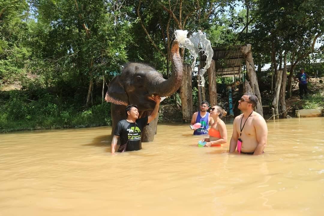 象のお世話体験ツアー