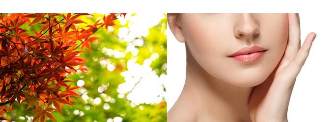 紅葉した紅葉(左)と顔の素肌を見せる女性