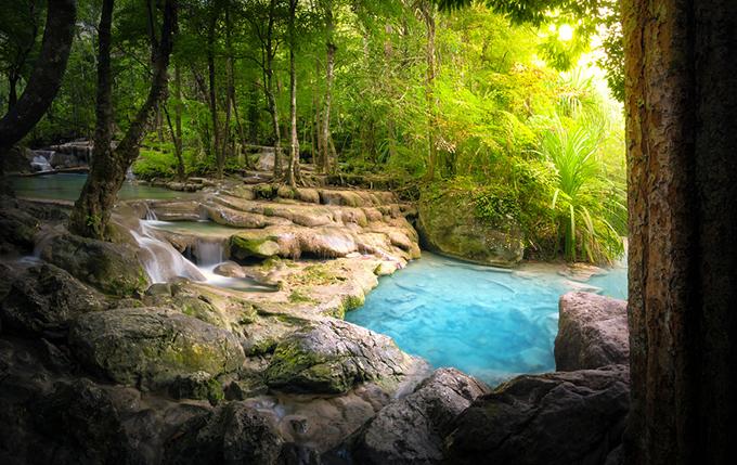 青い湖と木々の画像