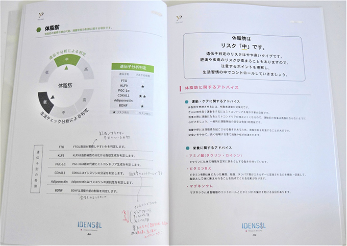 分析レポートの中身の画像